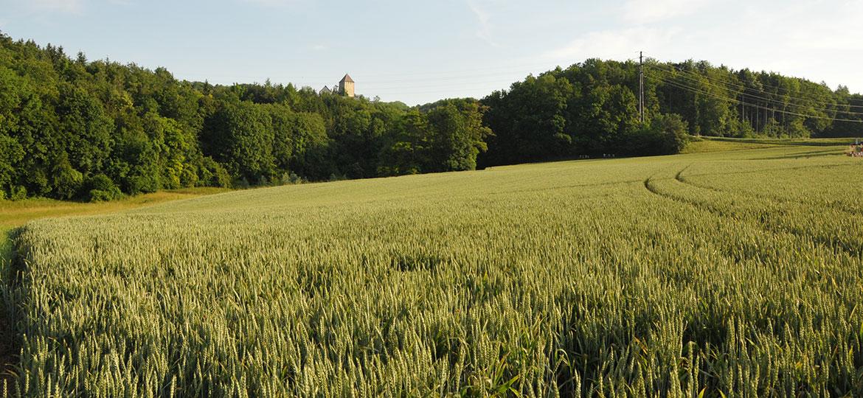 11-164_Schloss3_1170x540